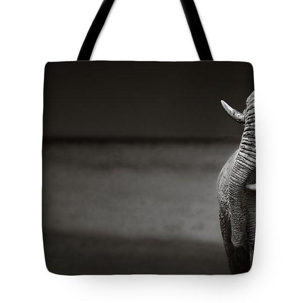 Elephants Interacting Tote Bag by Johan Swanepoel