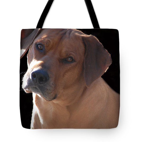 Tote Bag featuring the photograph Eli by Mim White