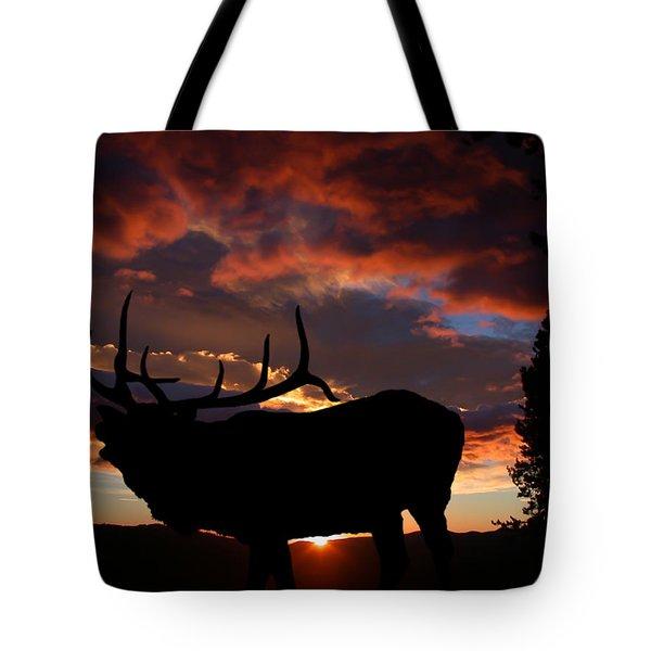 Elk At Sunset Tote Bag