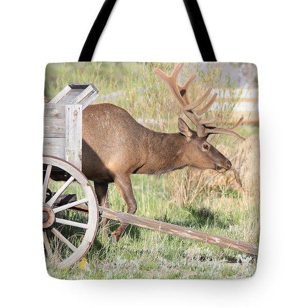 Elk Drawn Carriage Tote Bag