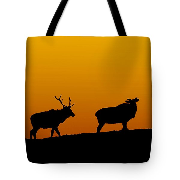 Elk In The Sunset Tote Bag
