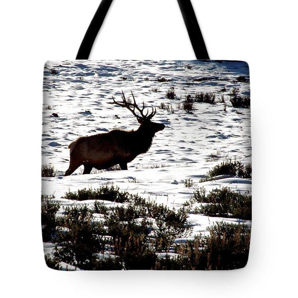 Tote Bag featuring the photograph Elk Silhouette by Sharon Elliott