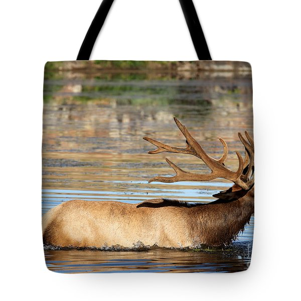 Elk Cooling Down In Lake Tote Bag