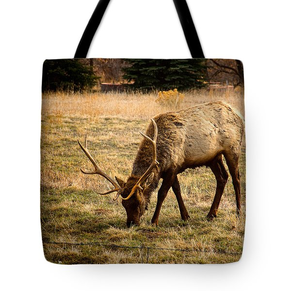 Elkin John Tote Bag by Jon Burch Photography