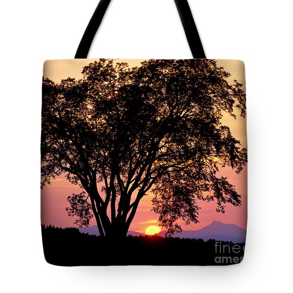 Tote Bag featuring the photograph Elm At Sunset by Alan L Graham