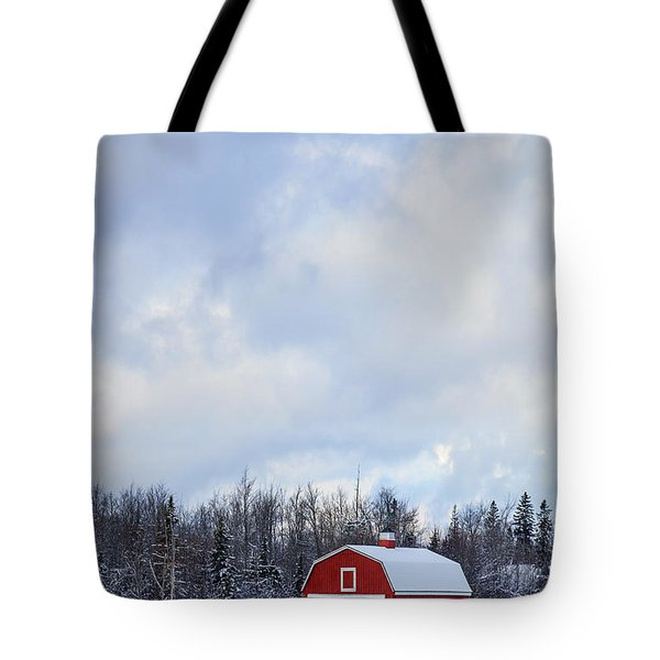 Embrace The Cold Tote Bag