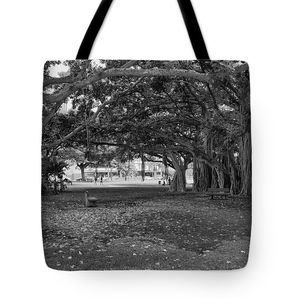 Embraced By Trees Tote Bag by Douglas Barnard