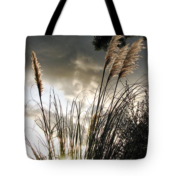 Embracing The Mystery Tote Bag by Rory Sagner