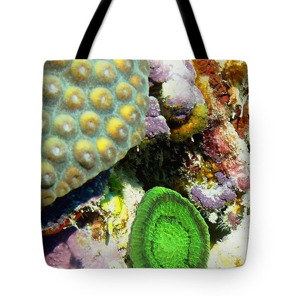 Tote Bag featuring the photograph Emerald Artichoke Coral by Amy McDaniel