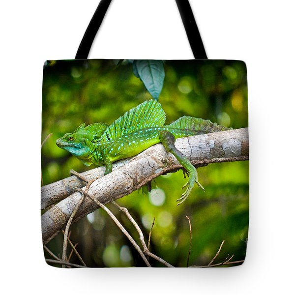 Emerald Lizard - Costa Rica Tote Bag by Gary Keesler