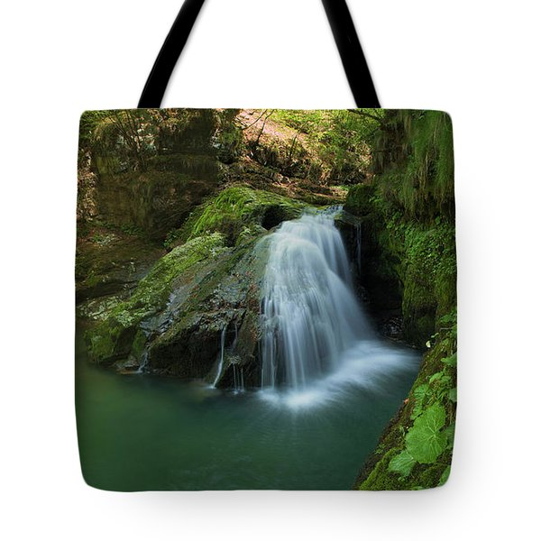 Emerald Waterfall Tote Bag by Davorin Mance