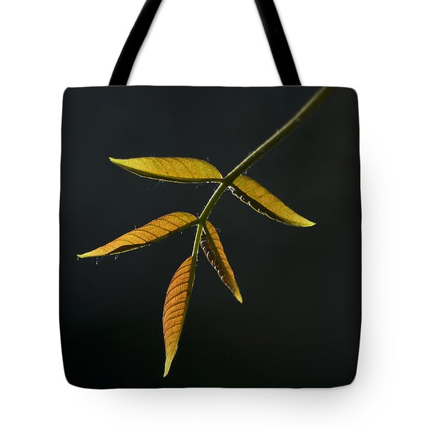 Tote Bag featuring the photograph Emergence by Yulia Kazansky
