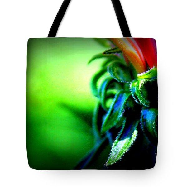 Emerging Coneflower Tote Bag by Renee Croushore