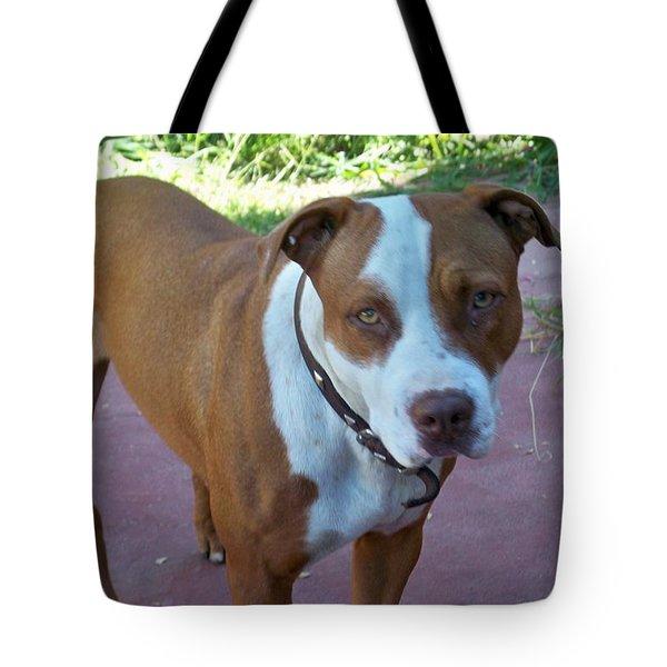 Emma The Pitbull Dog Tote Bag