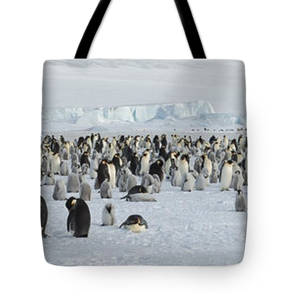 Emperor Penguins Aptenodytes Forsteri Tote Bag by Panoramic Images