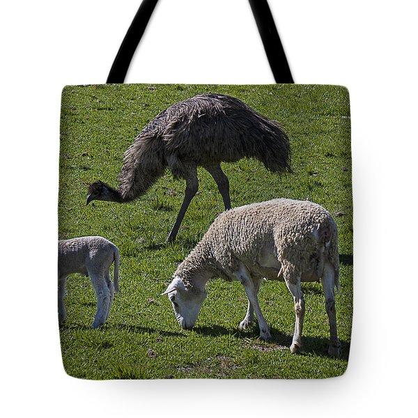 Emu And Sheep Tote Bag