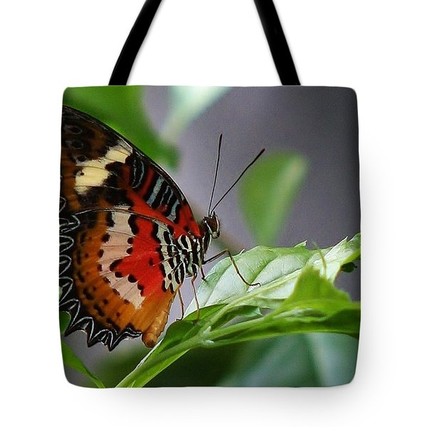 Tote Bag featuring the photograph Enchanted Butterfly by Bruce Bley