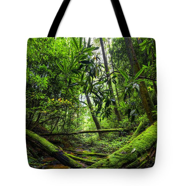 Enchanted Forest Tote Bag by Debra and Dave Vanderlaan