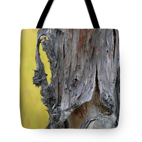 Tote Bag featuring the painting Enchanted by Newel Hunter