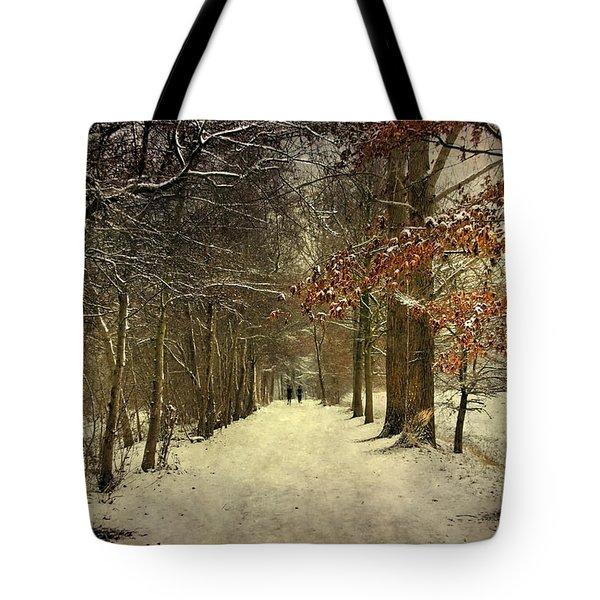 Enchanting Dutch Winter Landscape Tote Bag