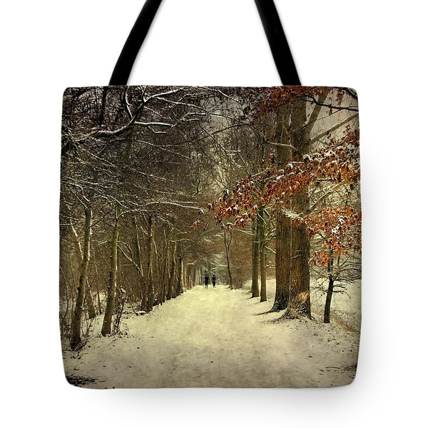 Enchanting Dutch Winter Landscape Tote Bag