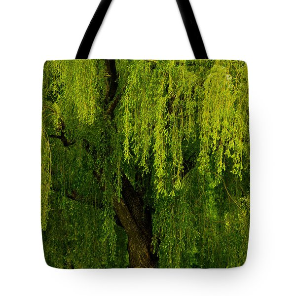 Enchanting Weeping Willow Tree  Tote Bag