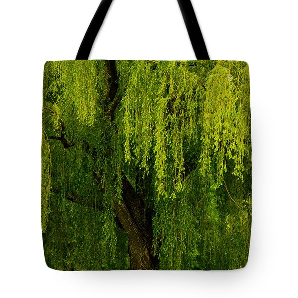 Enchanting Weeping Willow Tree  Tote Bag by Carol F Austin