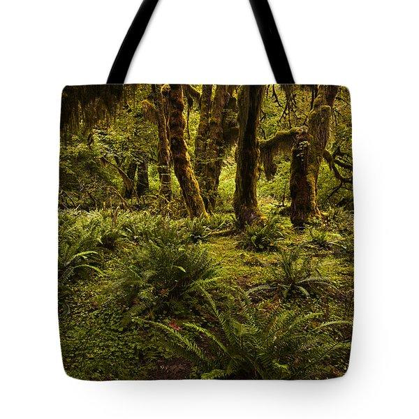 Enchantment Tote Bag by Mark Kiver