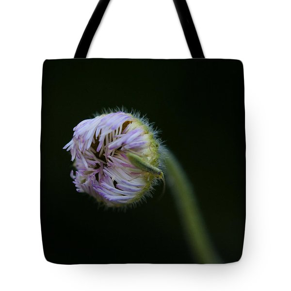 Tote Bag featuring the photograph Enclosed by Ruth Jolly