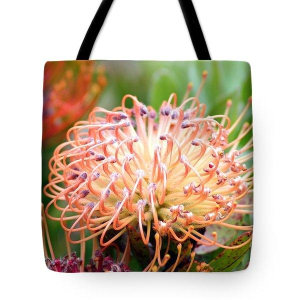 Encompassing Proteas Tote Bag