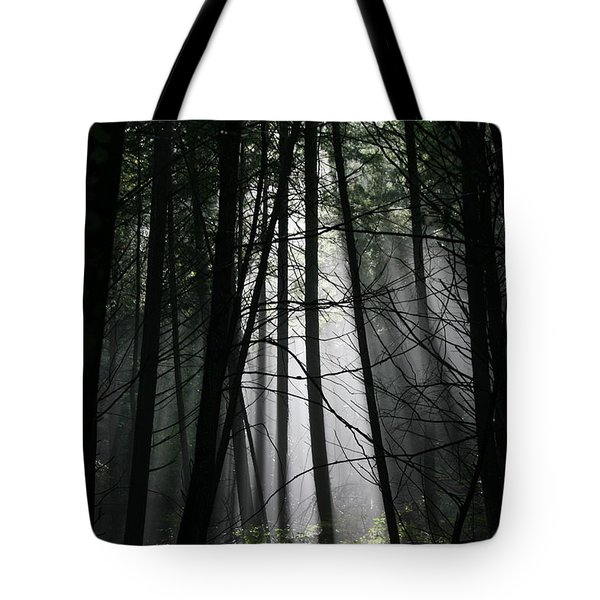 Encounter Of The Vermont Kind No.2 Tote Bag by Neal Eslinger