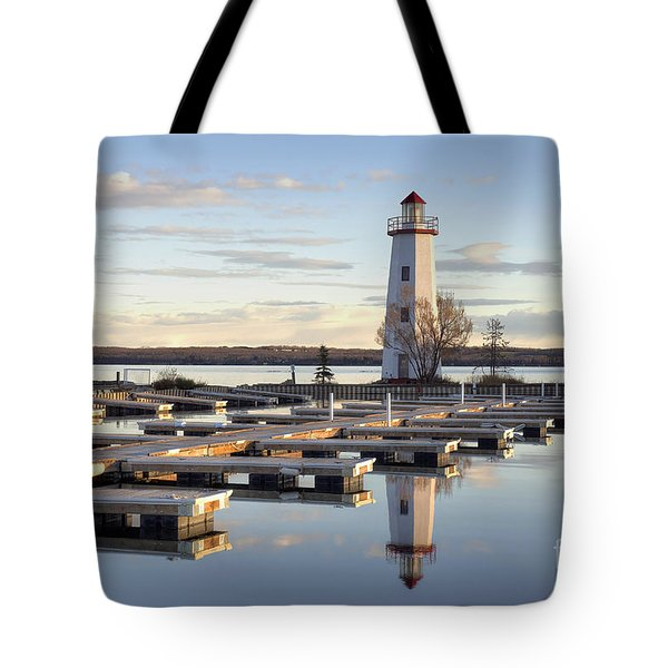 End Of Season-2 Tote Bag by Shannon Carson