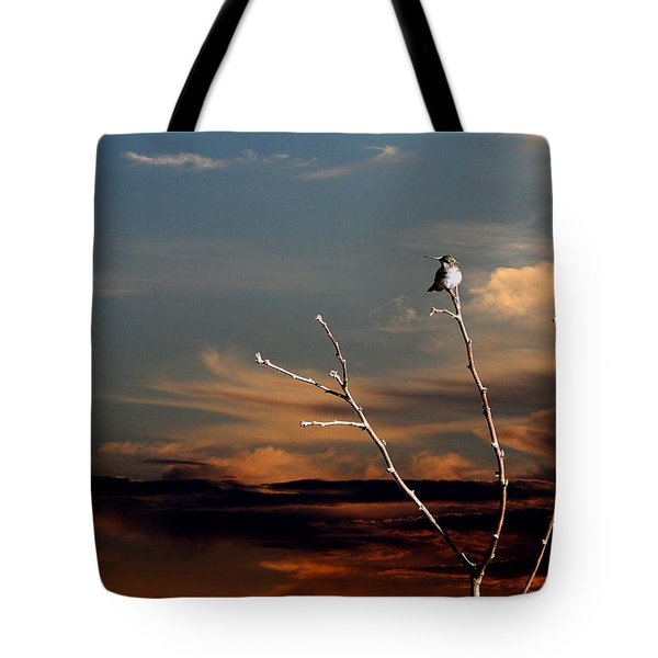 End Of The Day Tote Bag by John Freidenberg