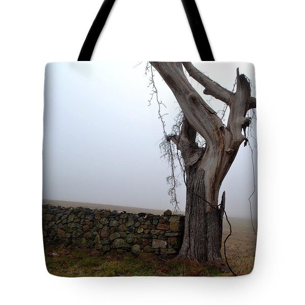 End Point Tote Bag by Carlee Ojeda