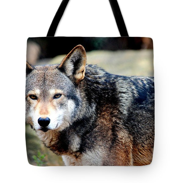 Endangered Red Wolf Tote Bag