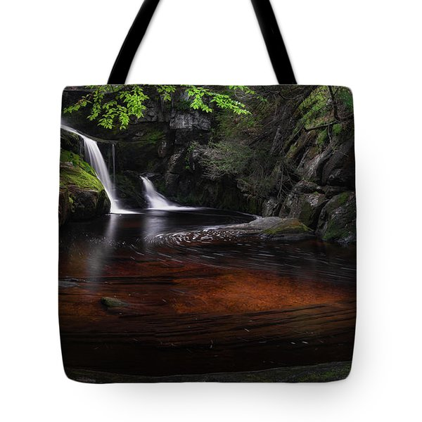 Tote Bag featuring the photograph Enders Falls Spring by Bill Wakeley