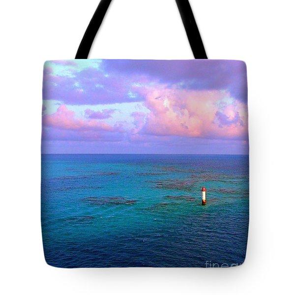 Tote Bag featuring the photograph Endless Horizon by Judy Palkimas