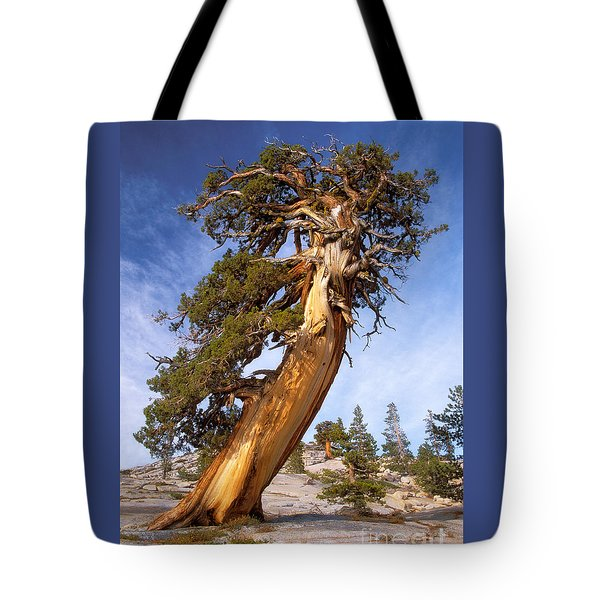 Endurance Tote Bag by Alice Cahill