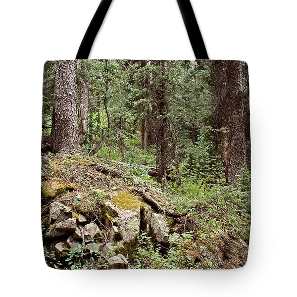 Engineer Pass In Colorado  Tote Bag by Brett Pfister