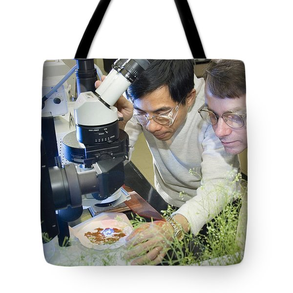 Engineering Plant Oils Tote Bag