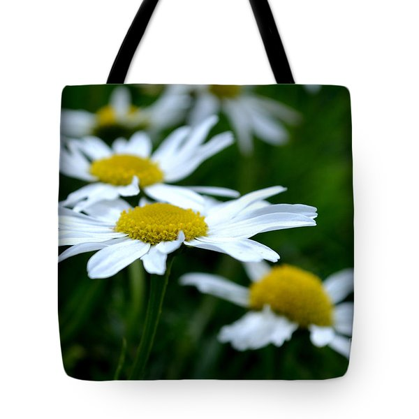 Tote Bag featuring the photograph English Daisies by Scott Lyons