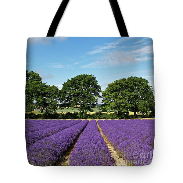 English Lavender Fields Near Selborne Hampshire Tote Bag by Alex Cassels
