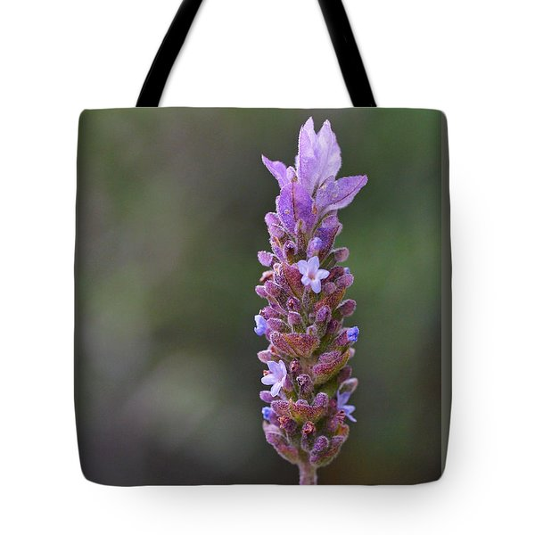 English Lavender Tote Bag by Rona Black