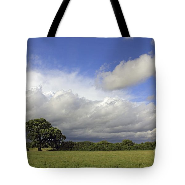 English Oak Under Stormy Skies Tote Bag