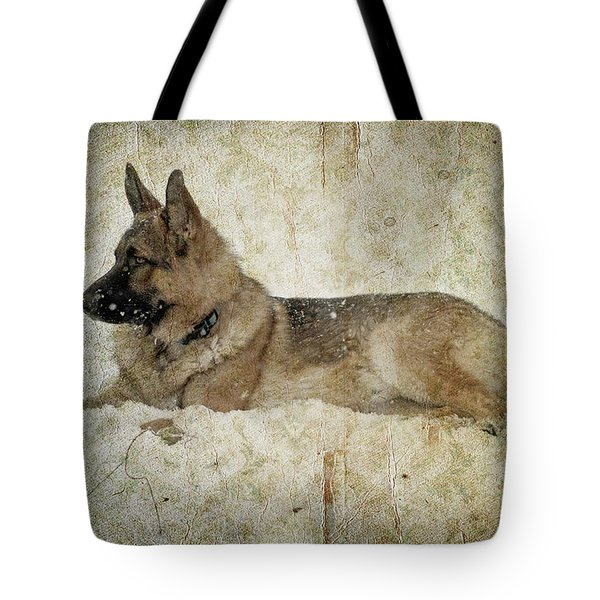 Enjoying The Snow Tote Bag by Sandy Keeton