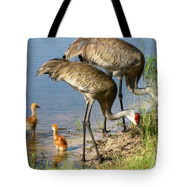 Enjoying The Water Tote Bag by Zina Stromberg