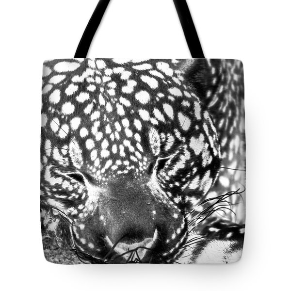 Entering The Dream Realm Tote Bag
