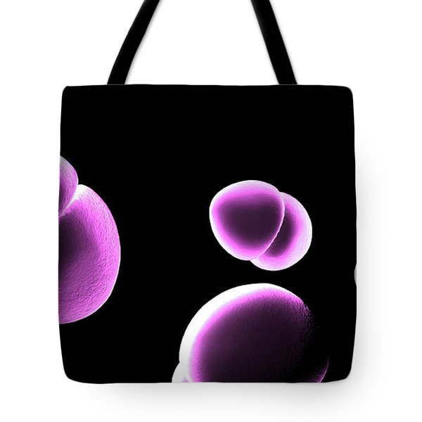 Enterococcus Bacteria Tote Bag by Spencer Sutton