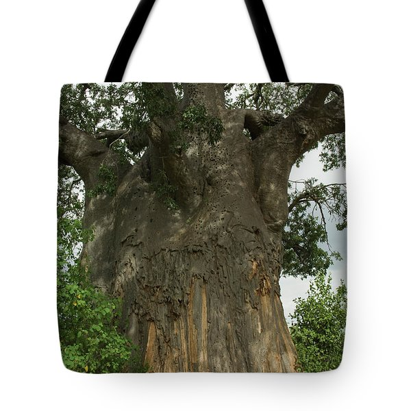 Entrance To A Poachers Hide In Baobab Tote Bag
