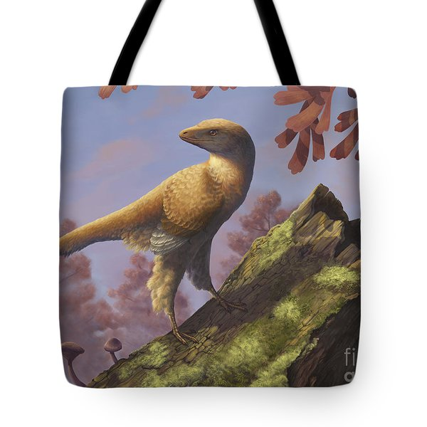 Eosinopteryx Brevipenna Perched Tote Bag by Emily Willoughby
